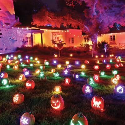 Halloween Lights Display