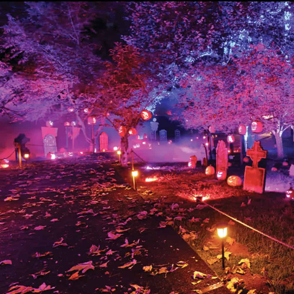 Halloween Lights Show At Nights of the Jack